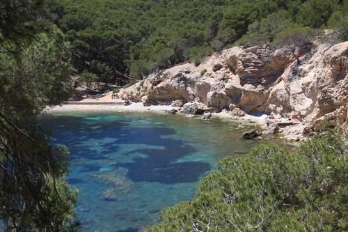Mallorca: Geheimtipp für Paguera-Urlauber